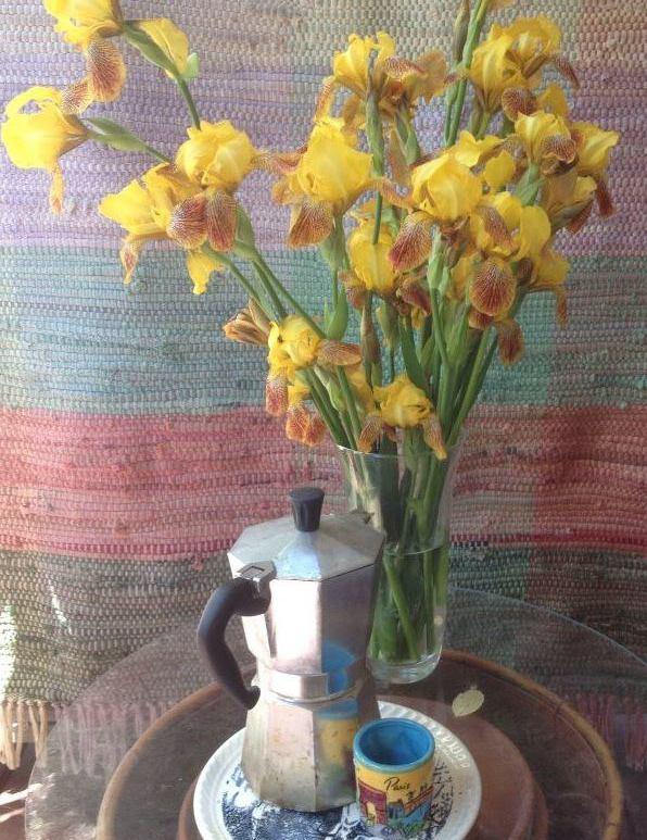 Decorative image with bouquet of irises